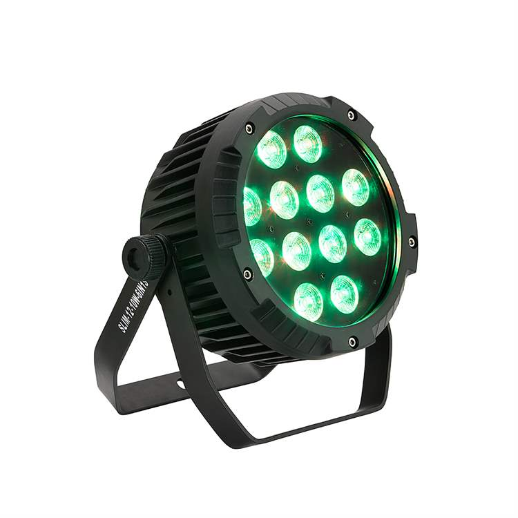 Soundsation SOUNDSATION L774L Indoor Slim PAR with 12 x 10W 6in1 LED no Fan
